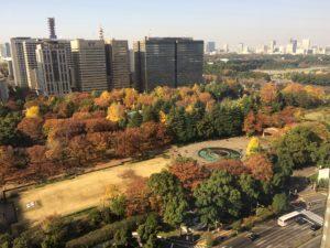 2016年11月下旬の日比谷公園の紅葉